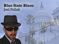 Blue State Blues: What's Behind the Coming Democratic Wave