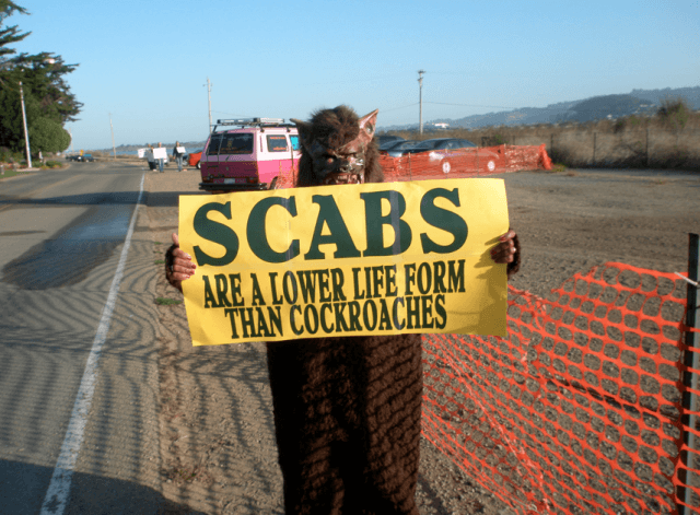UNION Scabs