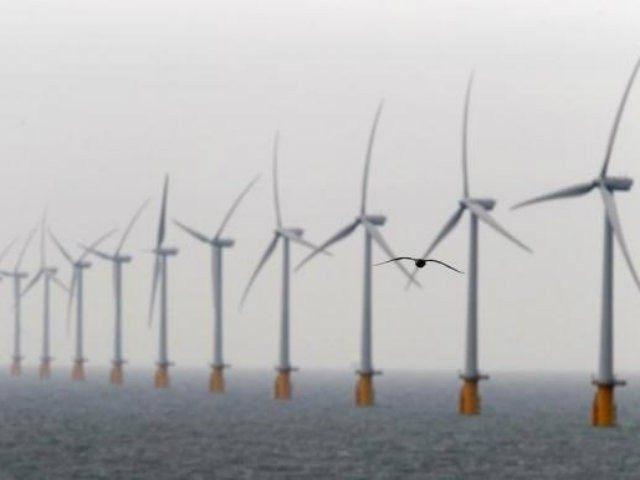 Wind Energy Dead in the Water Off Cape Cod