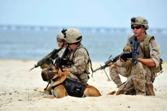 US-ATTACKS-BINLADEN-MILITARY-SEALS