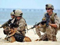 US-ATTACKS-BINLADEN-MILITARY-SEALS