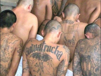 Previously Deported MS-13 Gang Member Caught at Texas Border