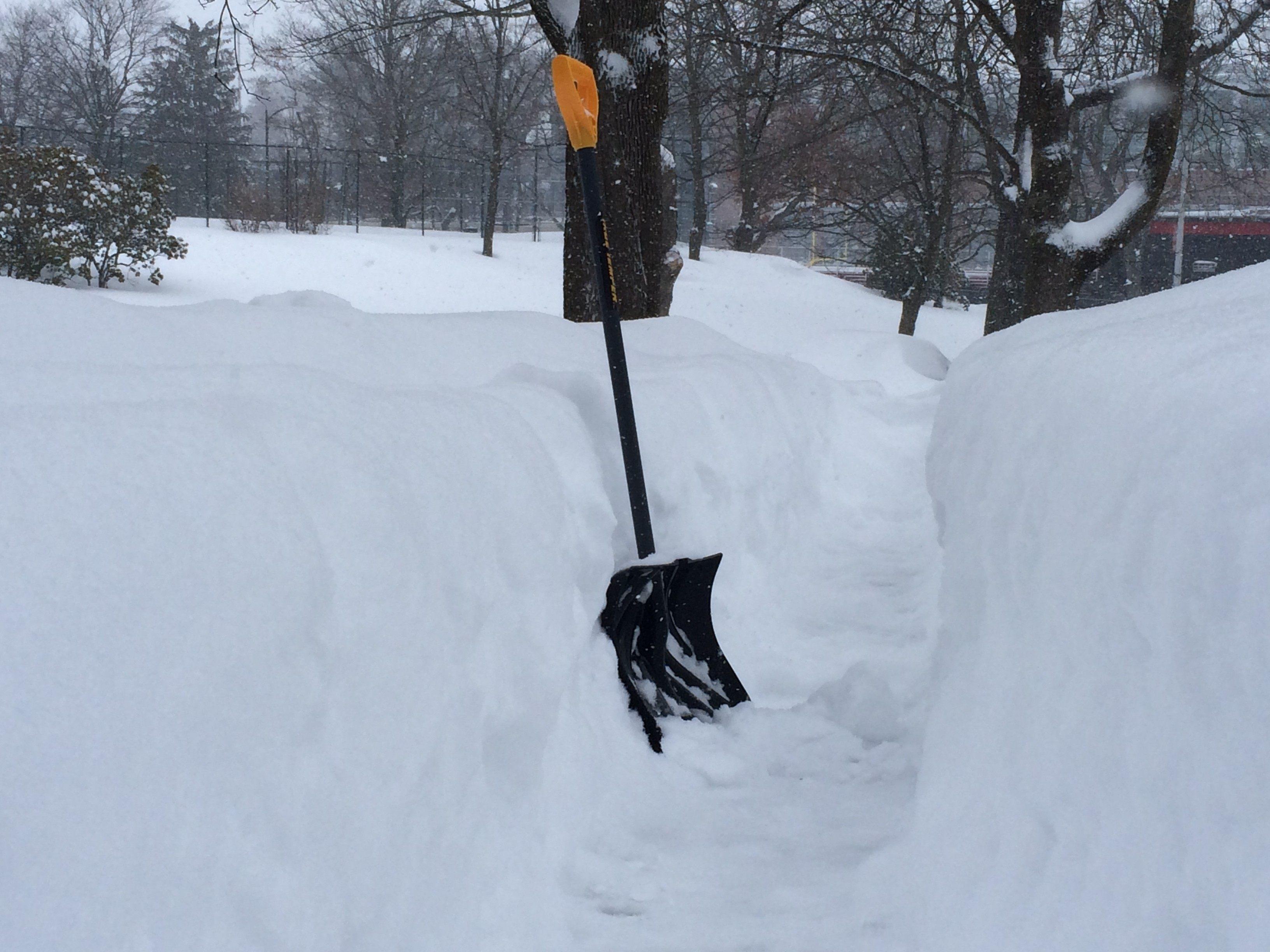blizzard 15 shovel