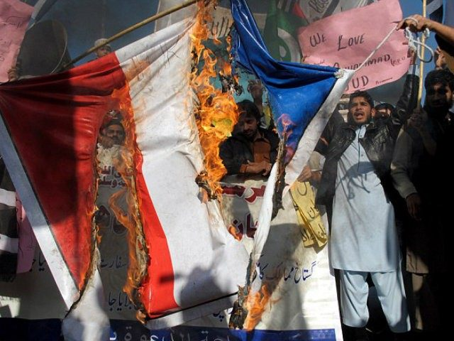 Pakistan protesters burn the French flag (AP)