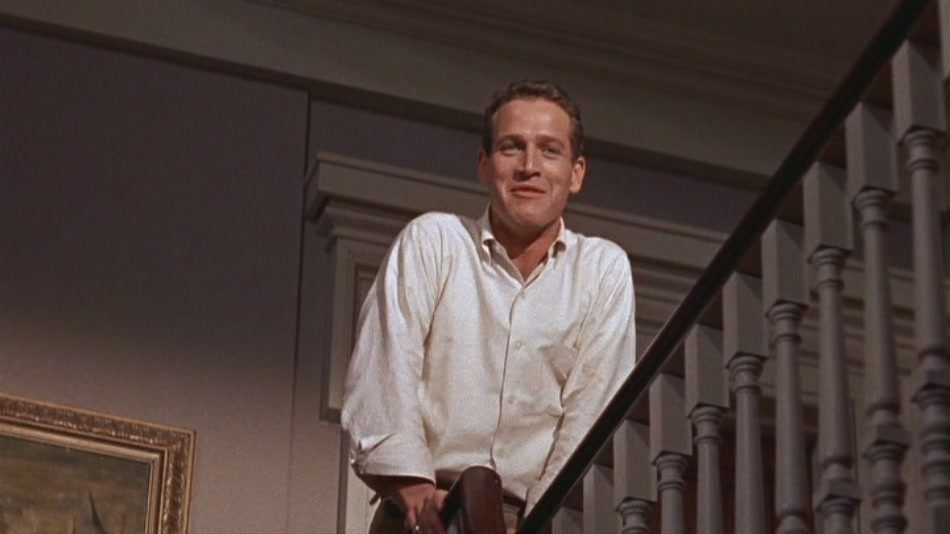 Paul-Newman-in-Cat-on-a-Hot-Tin-Roof-paul-newman-10992587-950-534