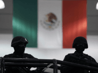 Mexico Fights Cartels