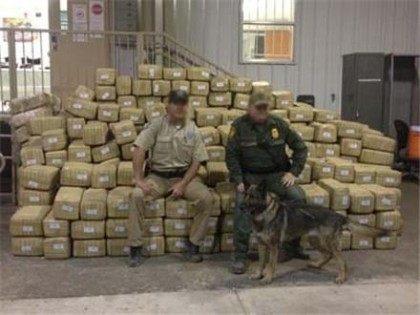 TPWD_Marijuana_Seizure1