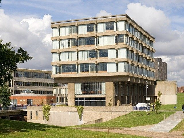 University-Essex