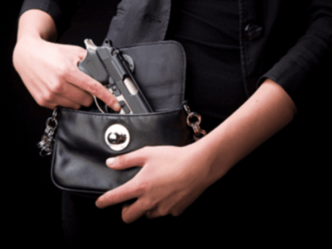gun-purseAP