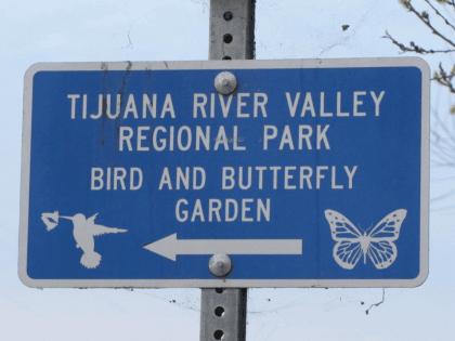 Butterfly Garden (Michelle Moons / Breitbart News)