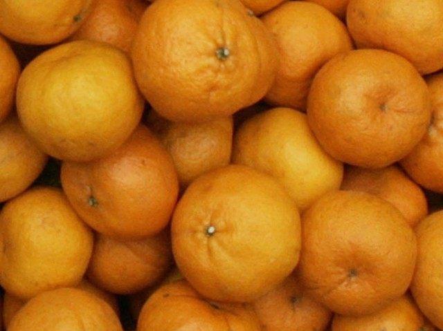 California Oranges (Pat Roque / Associated Press)