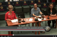 Kelly Burke Testifying at Senate Committee