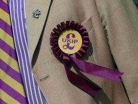 UKIP-Rosette