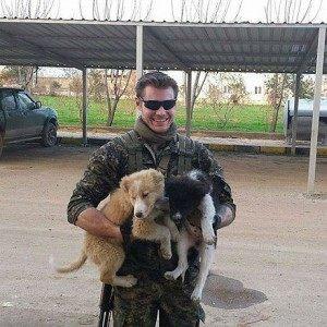 bagok_dogs