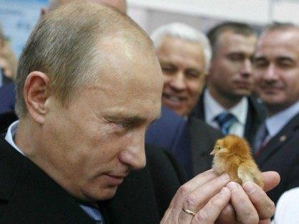 REUTERS/RIA Novosti/Alexei Druzhinin