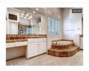 Crop_HarryReids Bathroom