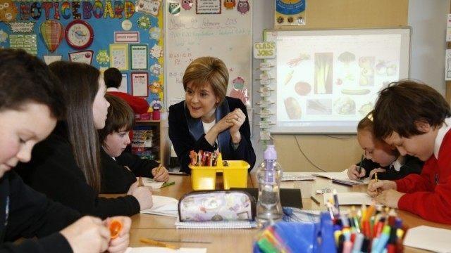 Sturgeon in a school