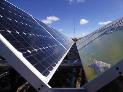 Report: Renewable Energy Is Bigger 'Scam' than Bernie Madoff and Enron
