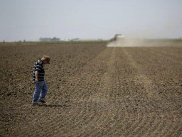 california-drought-AP