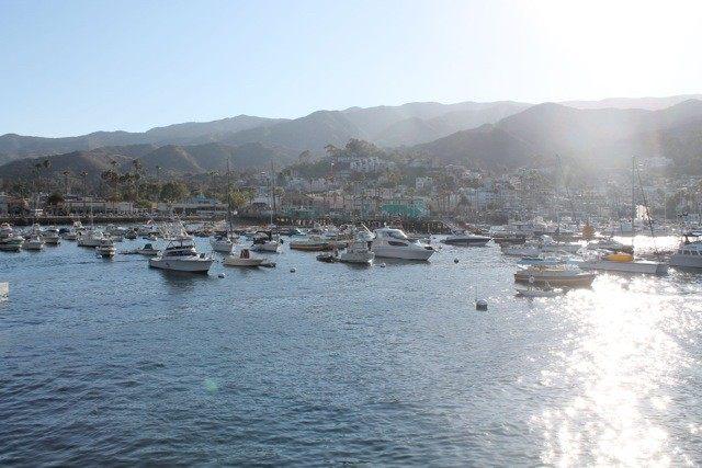 Catalina (Joel Pollak / Breitbart News)