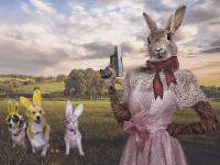 Easter Egg Gun (David Blackwell / Flickr / Creative Commons)