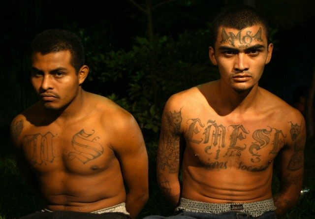 Men said to be gang members after being arrested during police operation