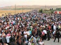 migrant-sharing plan
