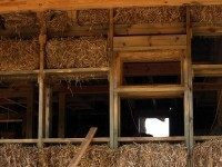 Straw Bale Construction (Chris Rubberdragon / Flickr / CC / Cropped)