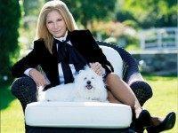 Instagram/Barbara Streisand
