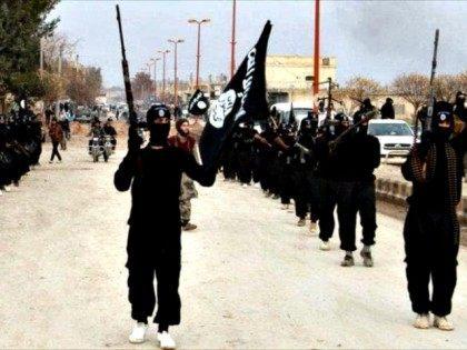 Militant Website/AP Photo