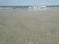 Coronado Beach (Joel Pollak / Breitbart News)