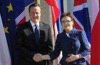 Ewa Kopacz, David Cameron