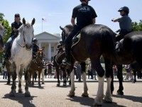 Mounted members of law enforcement gather in front of the White House in Washington, Thursday, May 14, 2015, as part of National Police Week. In 1962, President John F. Kennedy signed a proclamation which designated May 15th as Peace Officers Memorial Day and the week in which that date falls …