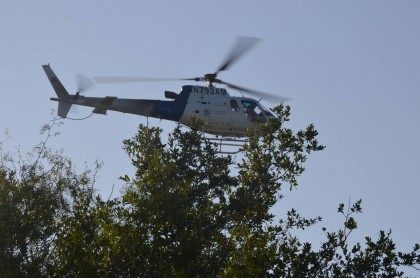 CBP Helicopter - BBTX Photo - Bob Price