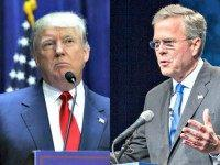 Jeb Bush Now Attacking Donald Trump in Español