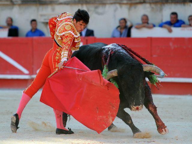 france-bullfight1