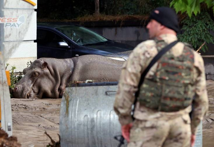 REUTERS/Beso Gulashvili