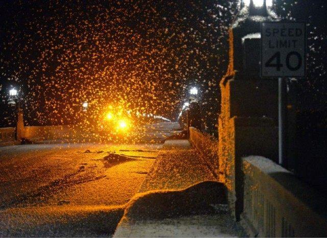 mayfly-swarms-ap