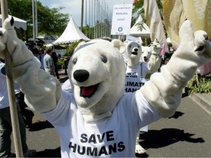 polar-bear-save-humans