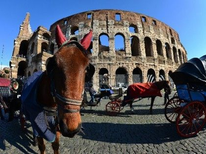 ITALY-ARCHAEOLOGY-COLOSSEUM