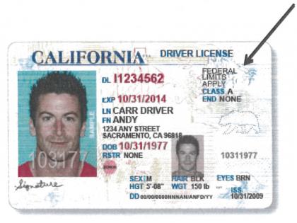DMV Illegal (DMV / SCPR)