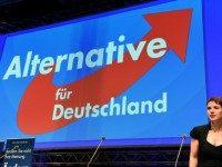 GERMANY-POLITICS-PARTY-CONGRESS-AFD