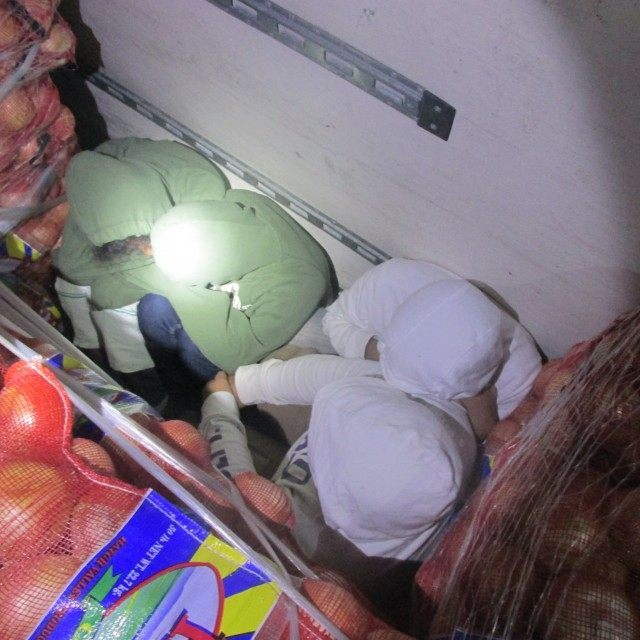 Federal agents caught a group of illegal immigrants hiding in a shipment of onions near the Texas border