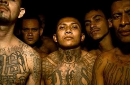 MS-13 Gang Members in US