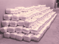 two-tons-of-marijuana-seized-at-Laredo-North-checkpoint