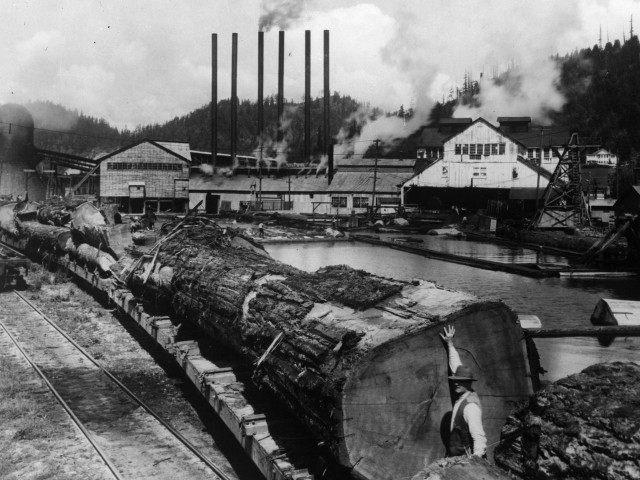 California sawmill (GPA / Getty)