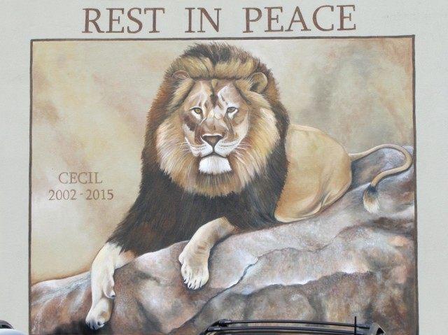 Cecil mural (Michelle Moons / Breitbart News)
