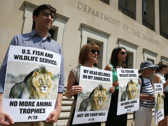 Cecil protest (Mark Wilson / Getty)