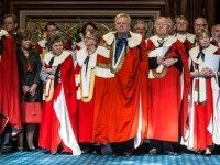 Lords ukip