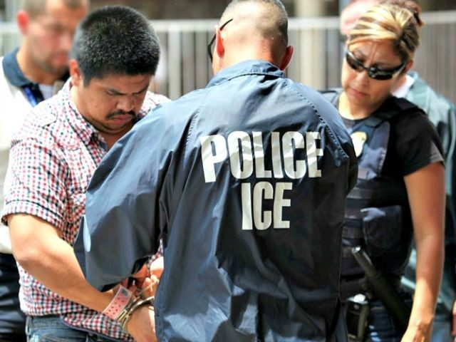 Image result for pics of ICE rounding up illegals